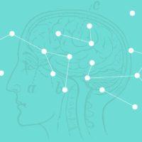 Adolescence as a sensitive period of social brain development